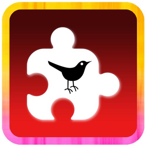 Puzzle Gallery